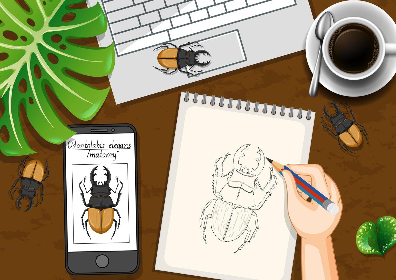Table de travail de bureau vue de dessus avec dessin de scarabée vecteur