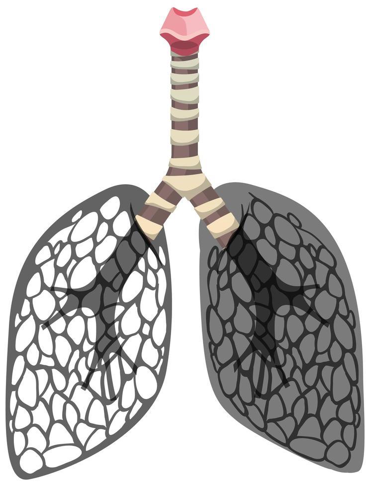 icône de cancer des poumons isolé sur fond blanc vecteur