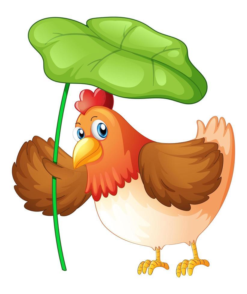 poulet tenant une feuille verte sur fond blanc vecteur