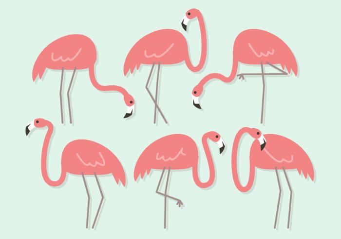 Vecteur libre mignon Flamingos