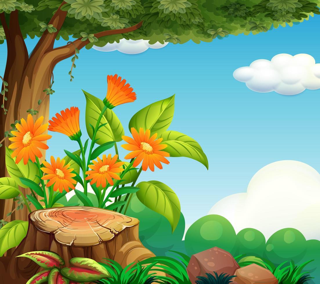 scène de fond avec le thème de la nature vecteur