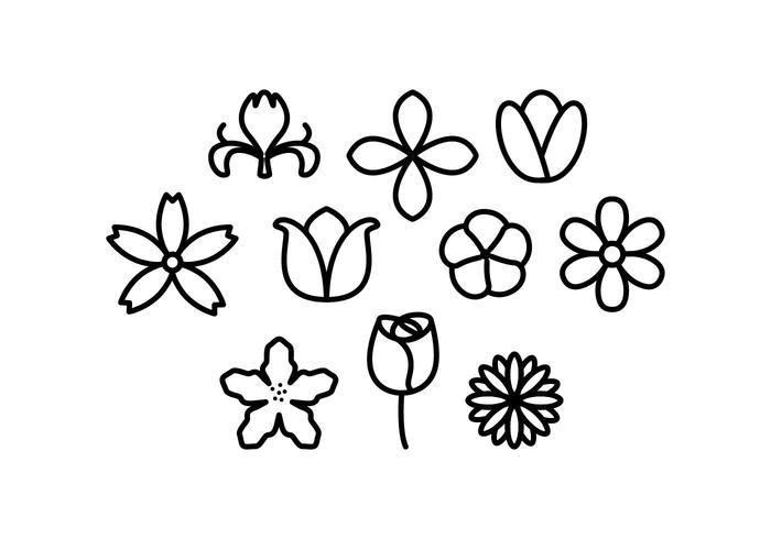 Vecteur libre d'icônes de ligne de fleurs