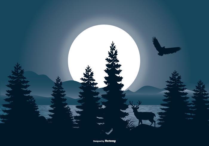 Belle scène de paysage nocturne vecteur