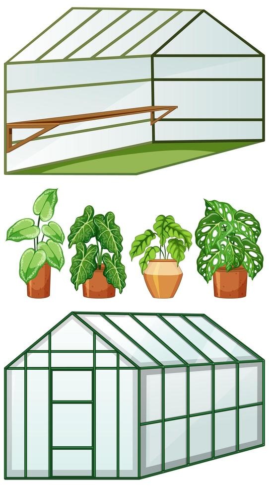 Fermer et ouvrir la vue de serre vide avec de nombreuses plantes en pots vecteur