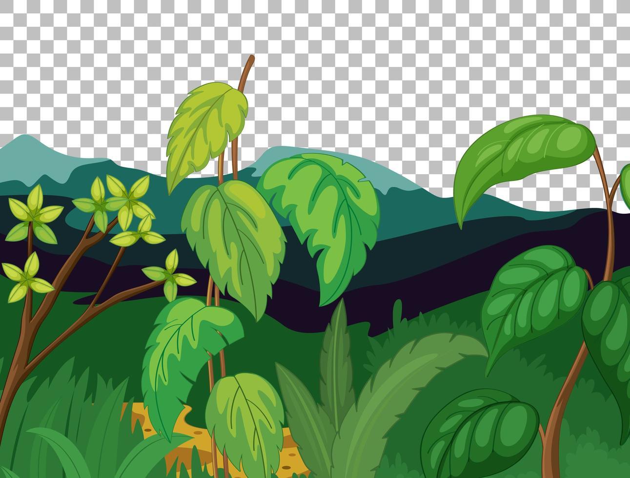 fond transparent de paysage extérieur nature vecteur