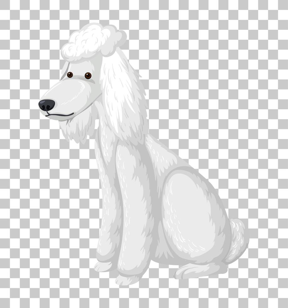 flaque blanche en position assise personnage de dessin animé isolé sur fond transparent vecteur