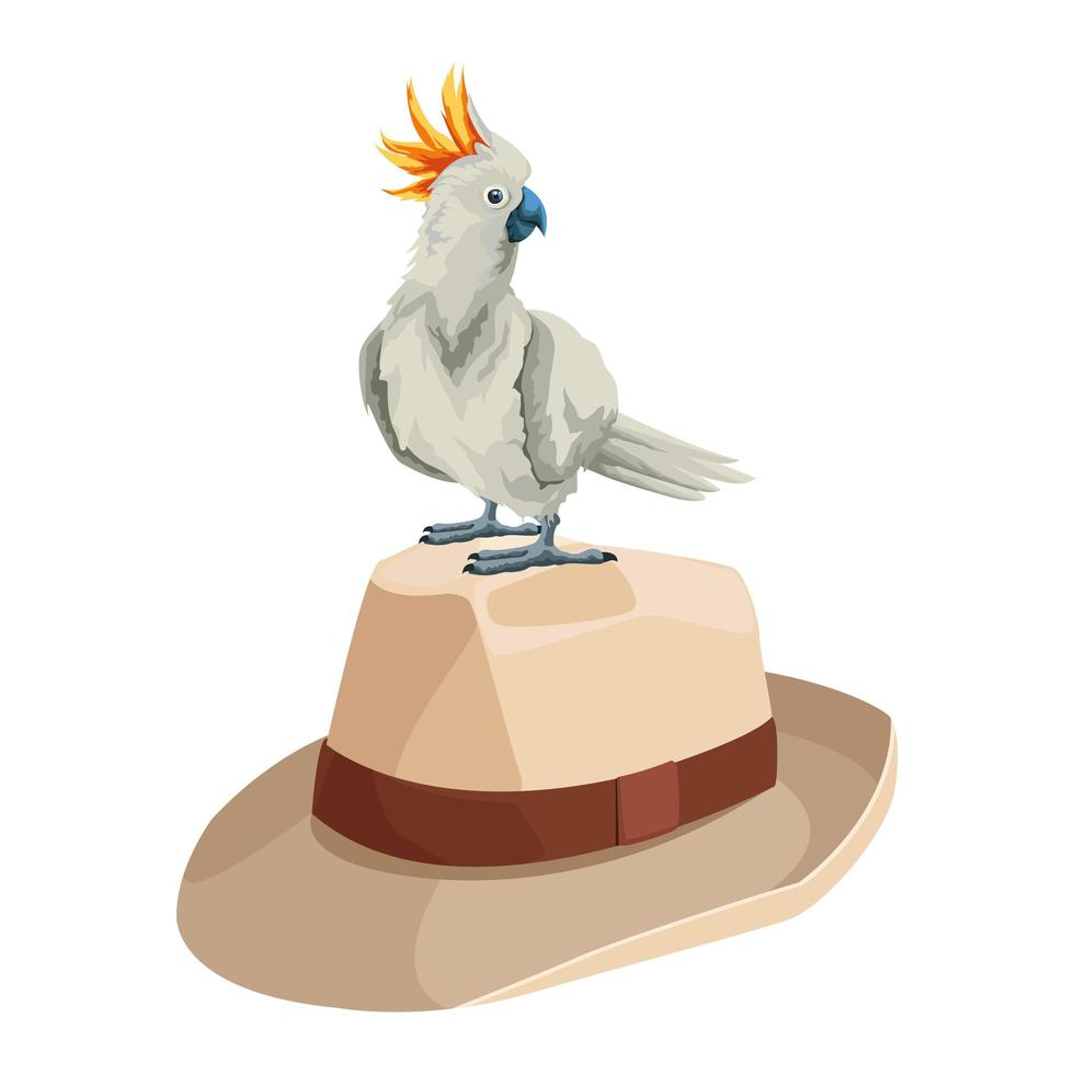 cacatoès sur un chapeau panama vecteur