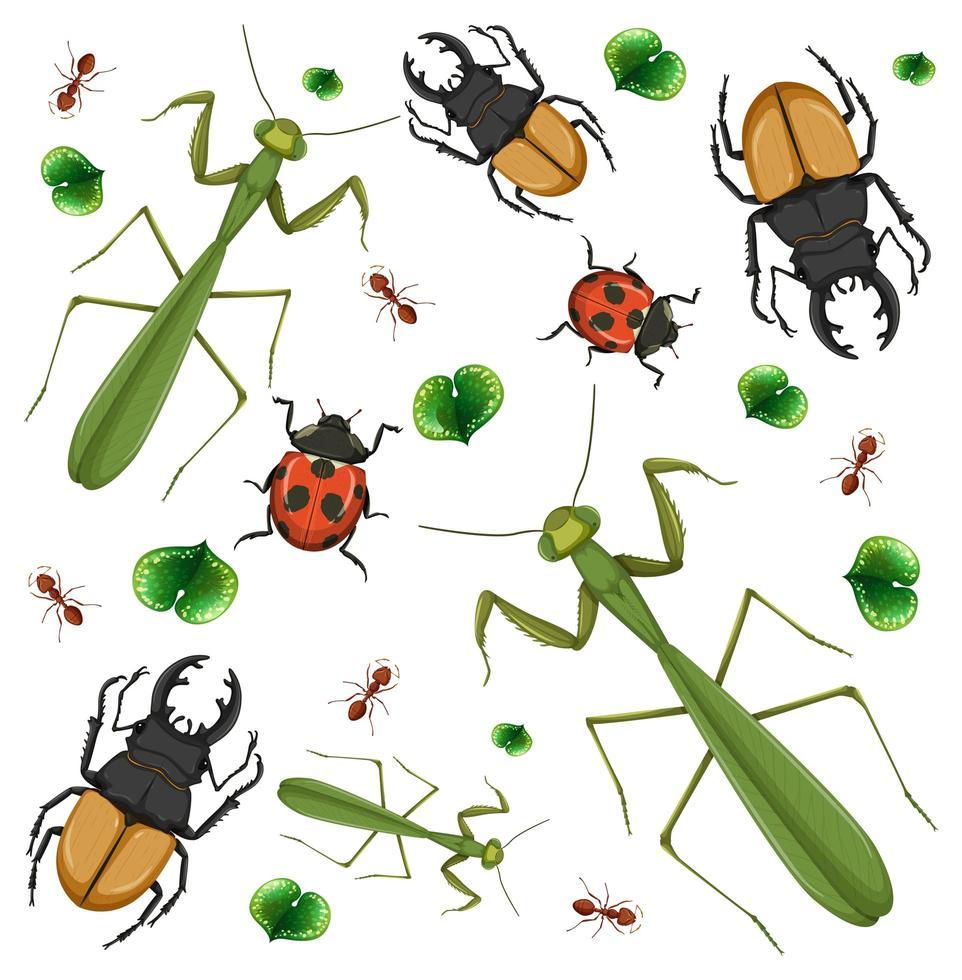 ensemble de différents insectes sur fond blanc vecteur