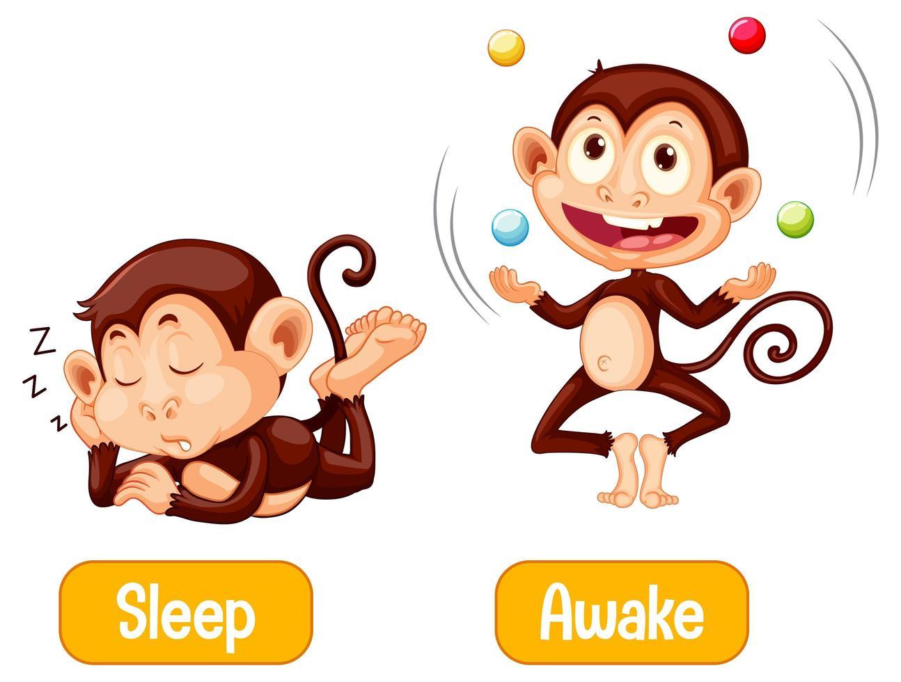 singes opposés avec sommeil et texte éveillé vecteur