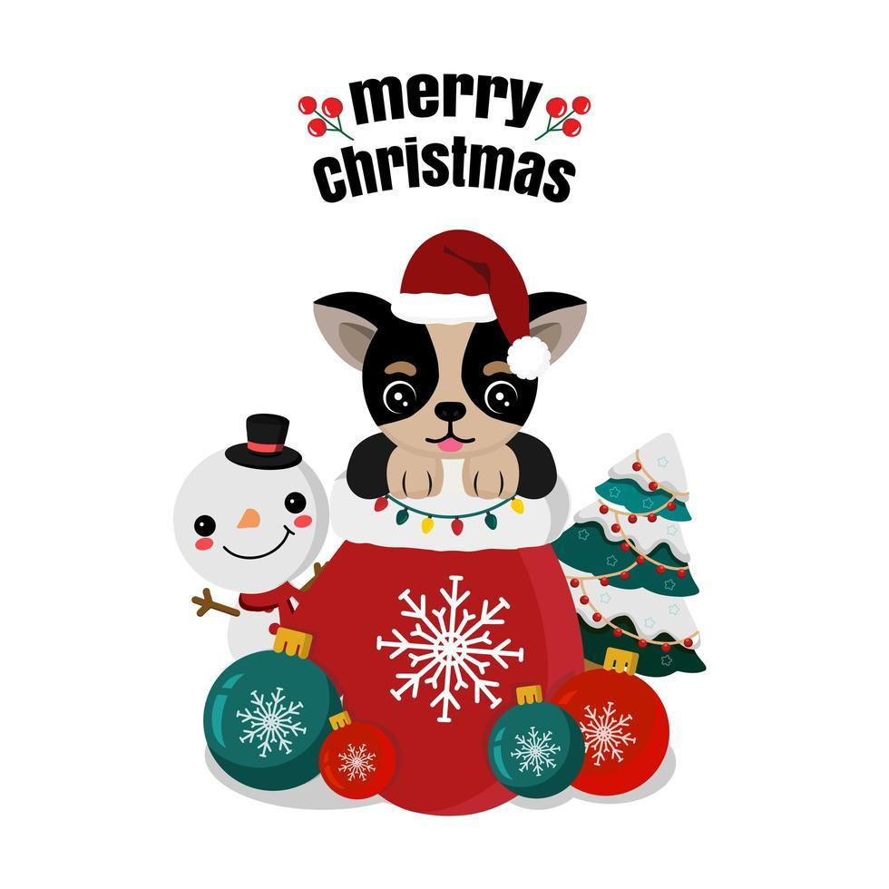 mignon chihuahua dans le sac de santa avec bonhomme de neige et ornements vecteur
