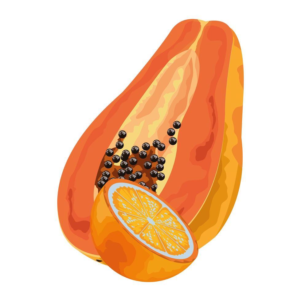 icônes de fruits tropicaux exotiques vecteur
