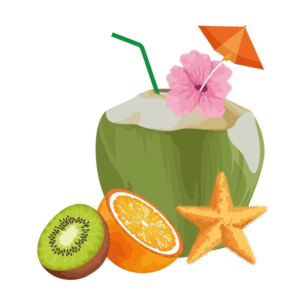 fruits tropicaux exotiques vecteur