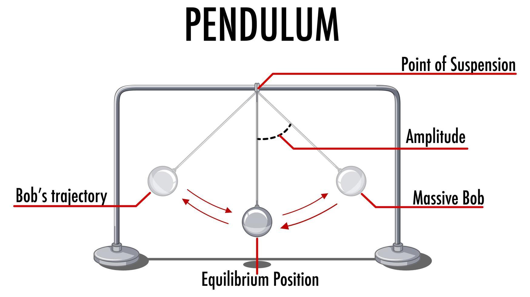 mouvement du pendule infographique pour l'enseignement de la physique vecteur