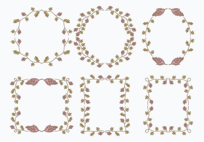 Éléments graphiques de modèle de cadre de fleur de réglisse vecteur