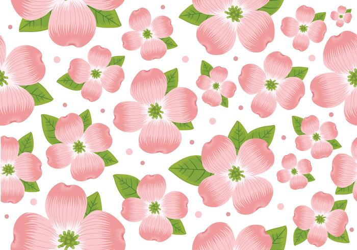 Pattern sans couture de Dogwood Flower vecteur
