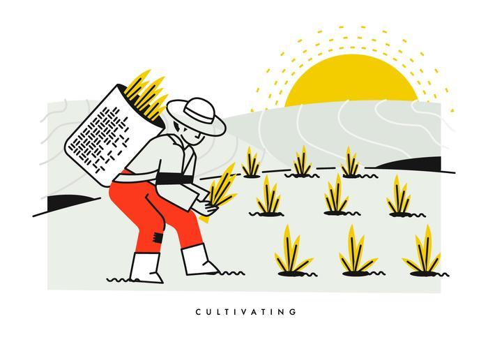 Champignons cultivant et plantant l'illustration vectorielle du riz vecteur