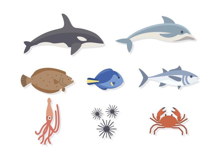 Vecteurs d'animaux de mer plats vecteur