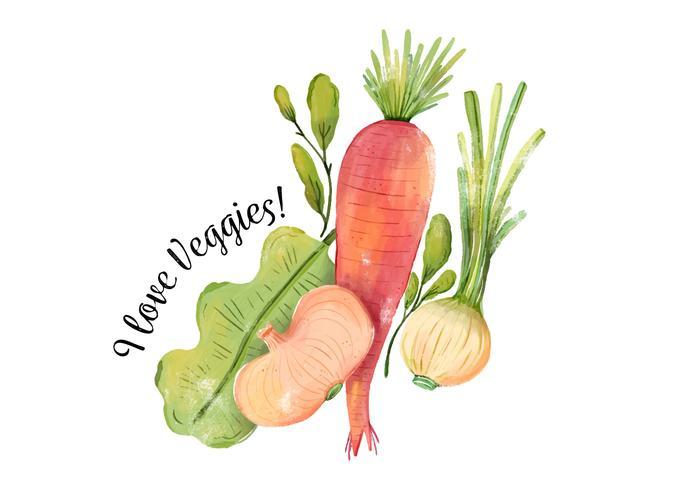 Veau d'aquarelle, carottes, oignons et laitue vecteur