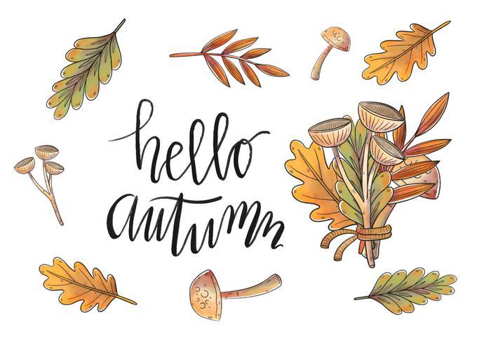 Aquarelle Feuilles d'automne et vecteurs de branche vecteur