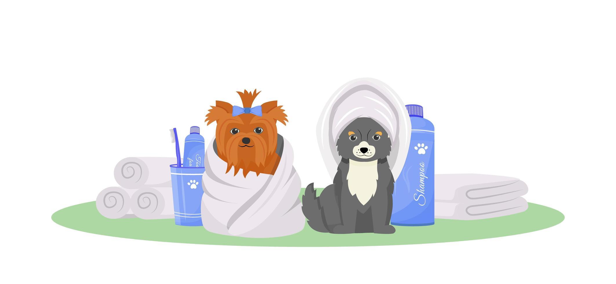 lavé les chiens à l'extérieur vecteur