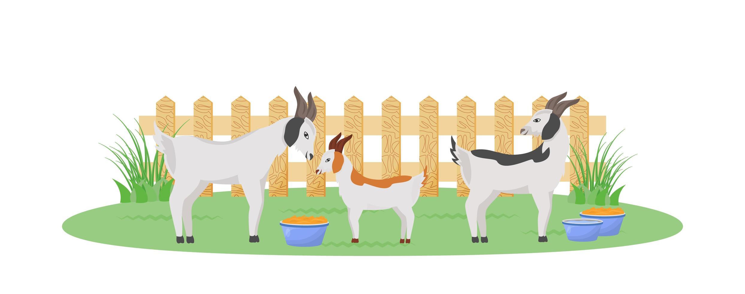 chèvres dans le jardin vecteur