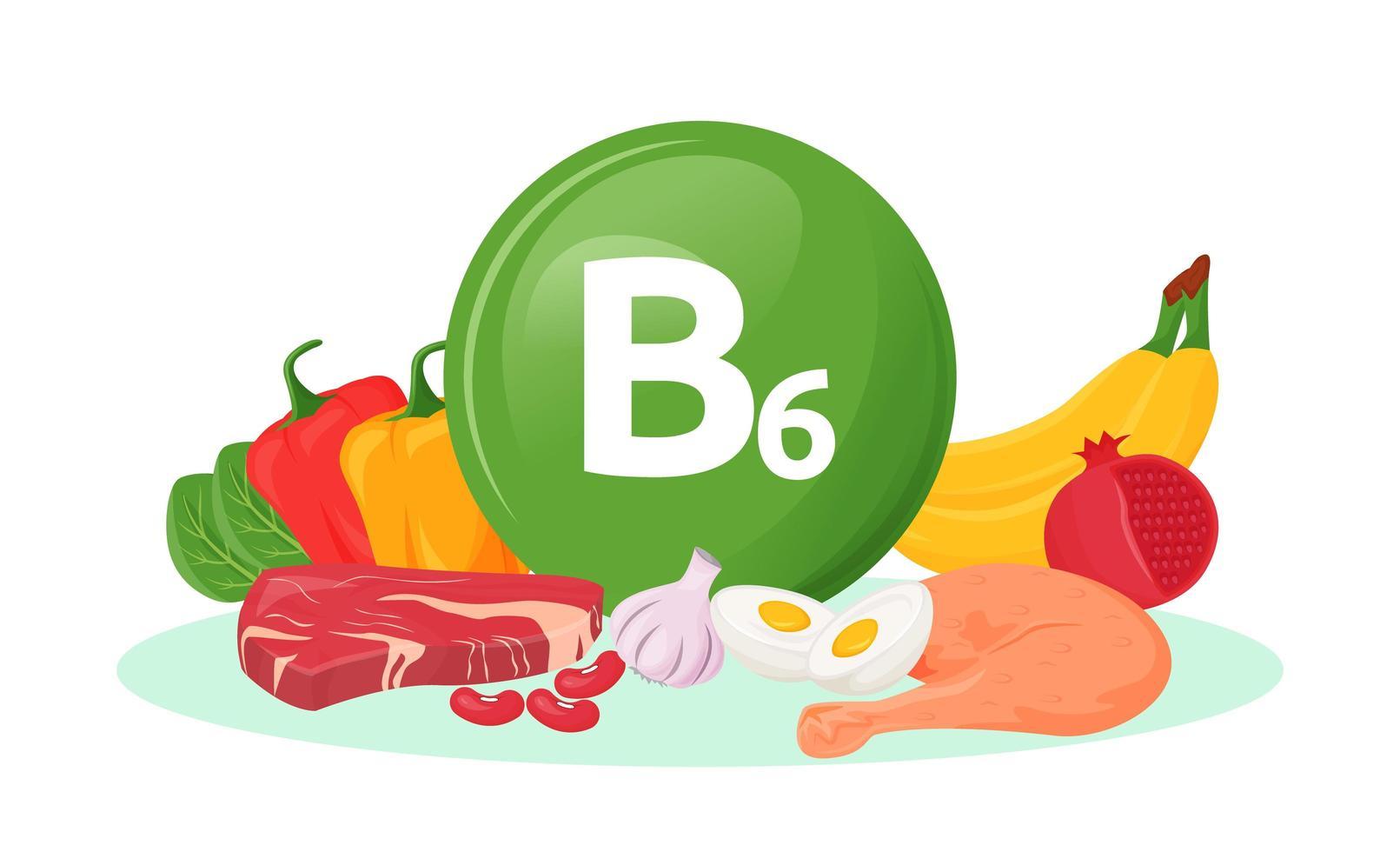 sources alimentaires de vitamine b6 vecteur