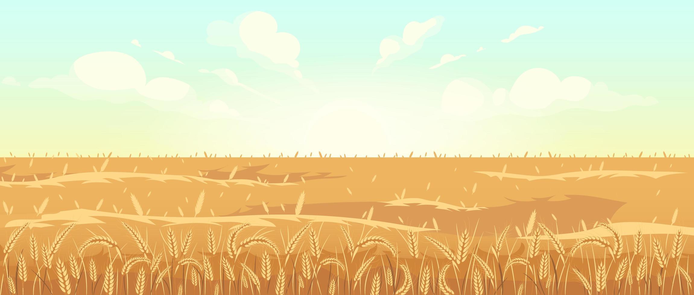 champ de blé doré vecteur