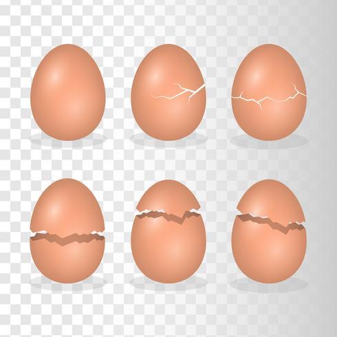 Œufs avec illustration de l'effet de fissure vecteur