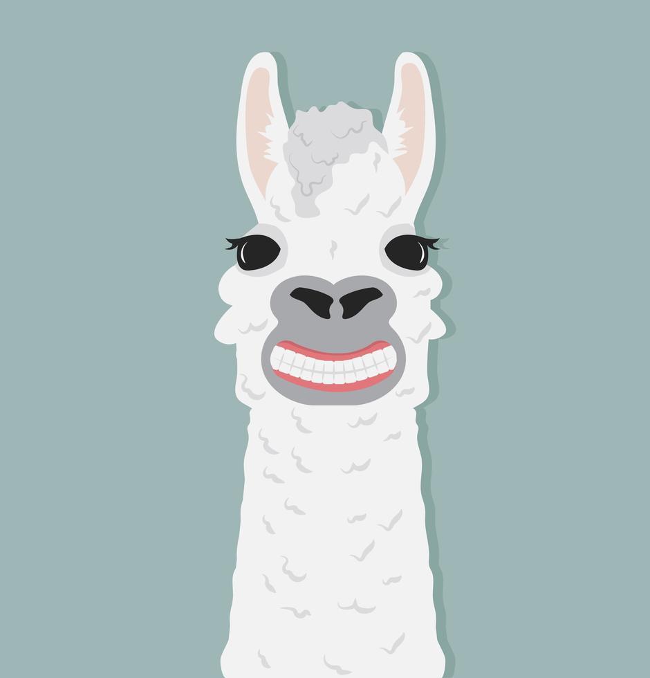 illustration vectorielle de sourire alpaga heureux vecteur