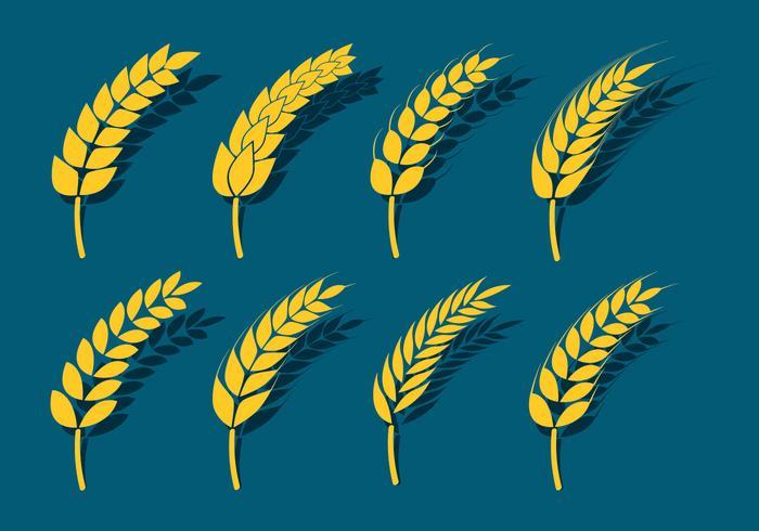 Icônes d'oreilles de blé vecteur