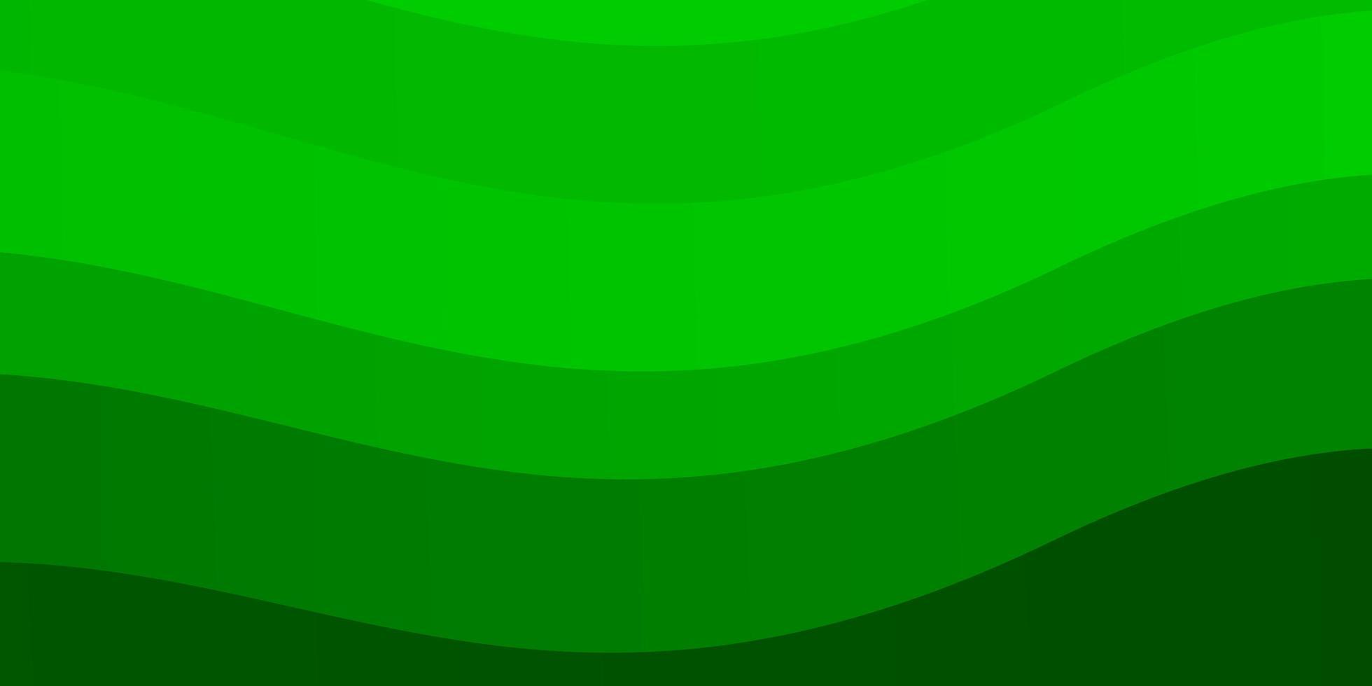 disposition vert clair avec des courbes. vecteur