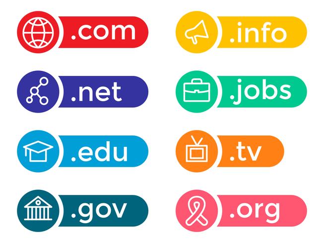 Vecteur d'icône de domaine coloré