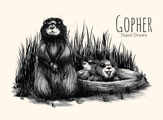 Gopher dessiné à la main vecteur