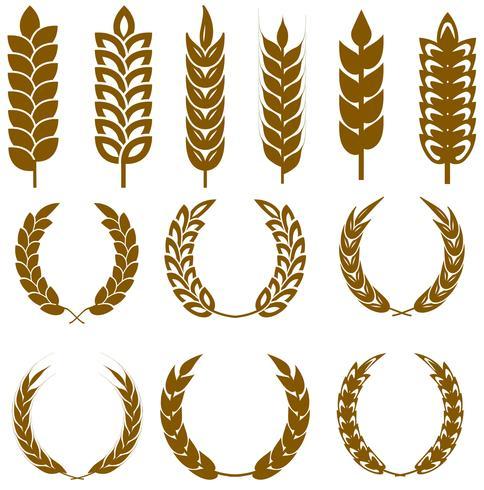 Jeu d'icônes vectorielles oreilles de blé vecteur