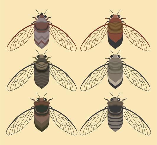 Cicada Bug avec collection de Vector Background jaune