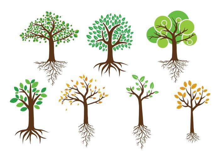 Arbre vert avec des vecteurs de racines vecteur