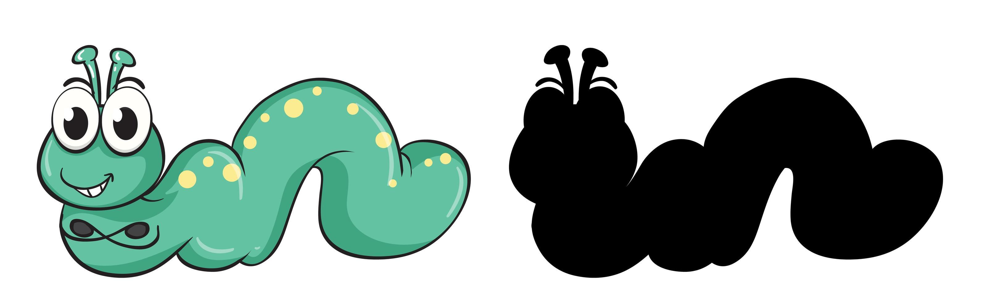 ensemble de personnage de dessin animé insecte et sa silhouette sur fond blanc vecteur