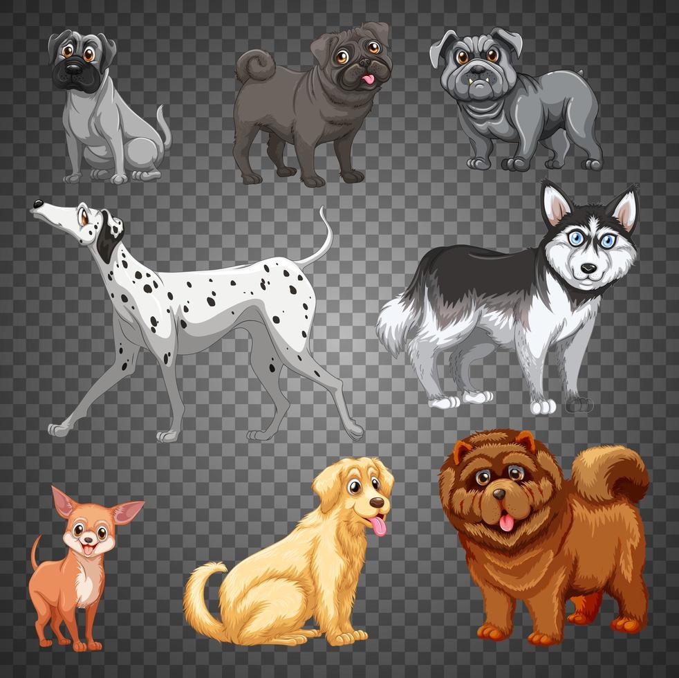 ensemble de différents chiens isolés vecteur