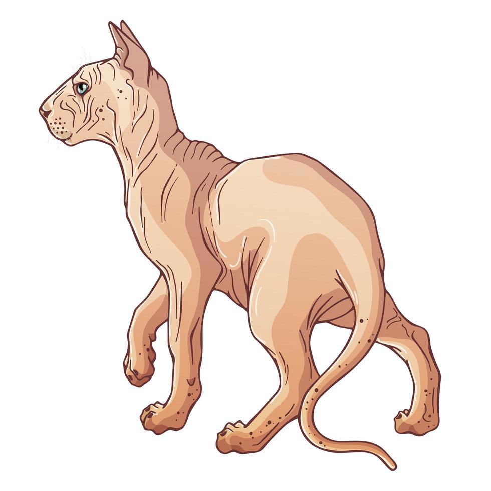 chat sphinx de personnage de dessin animé vecteur