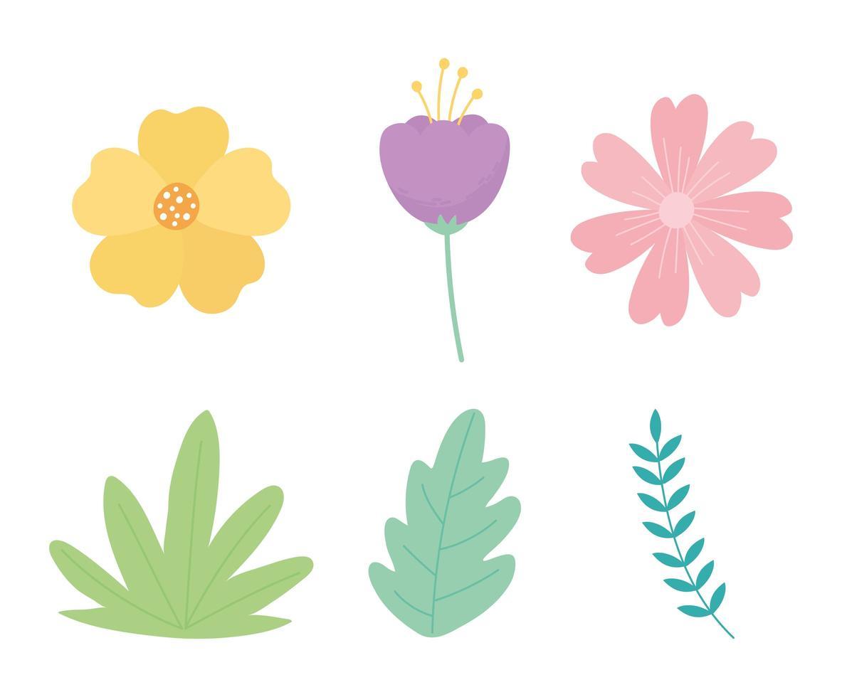 fleurs branche feuilles feuillage nature décoration icônes vecteur