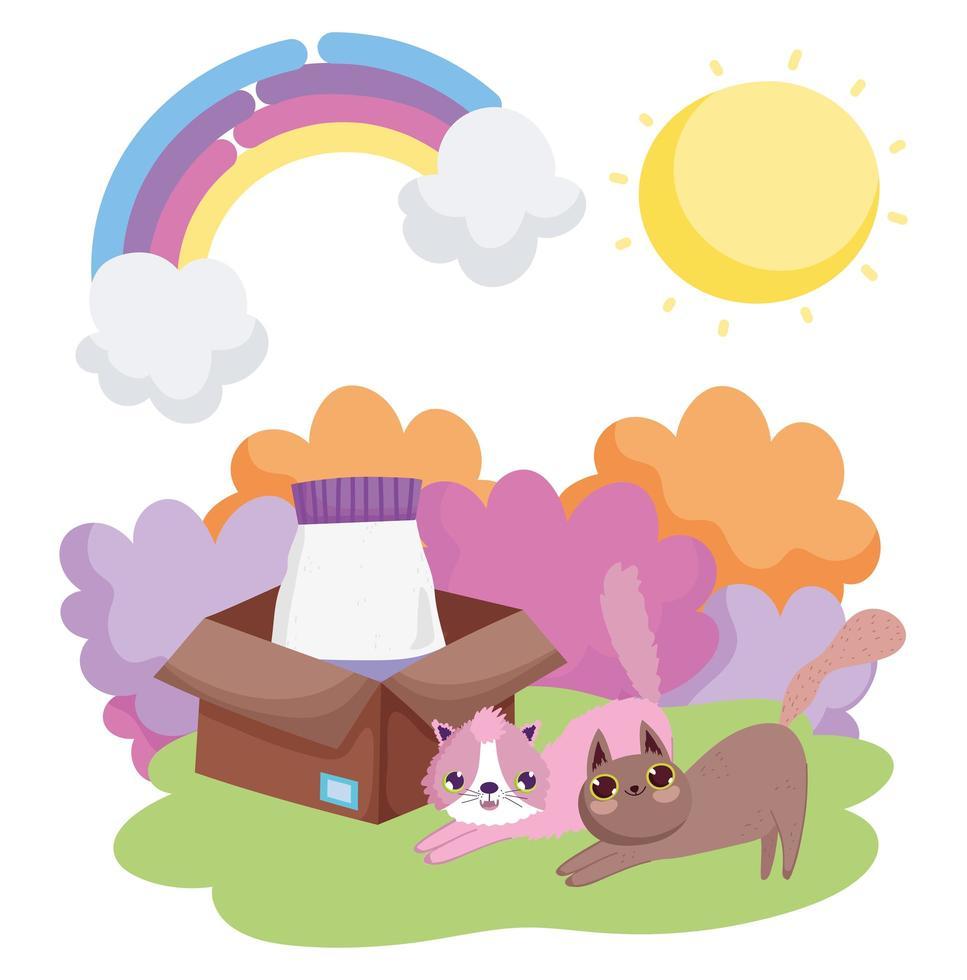 chats avec de la nourriture en boîte herbe soleil animaux vecteur