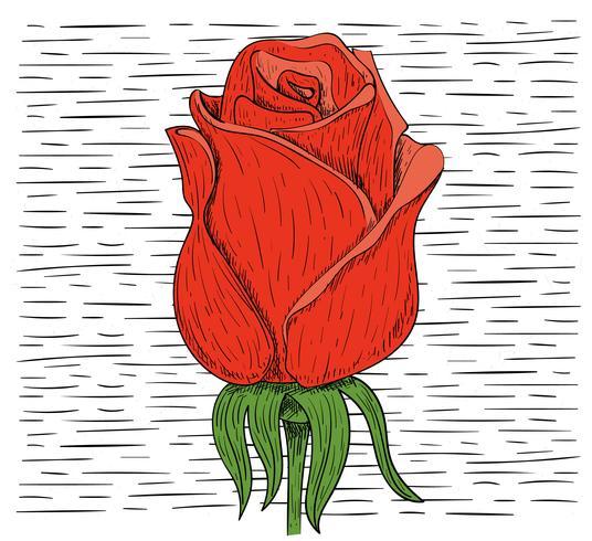 Illustration de vecteur dessiné à la main