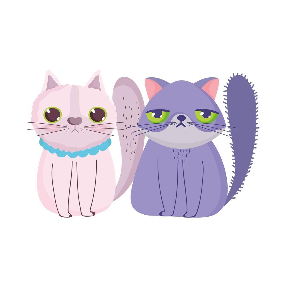 chats de dessin animé assis animaux domestiques félins vecteur