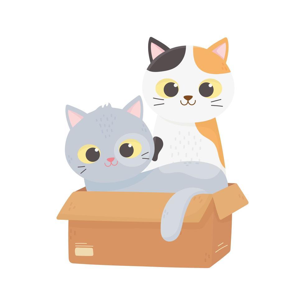 les chats me rendent heureux, les chatons mignons dans la boîte vecteur