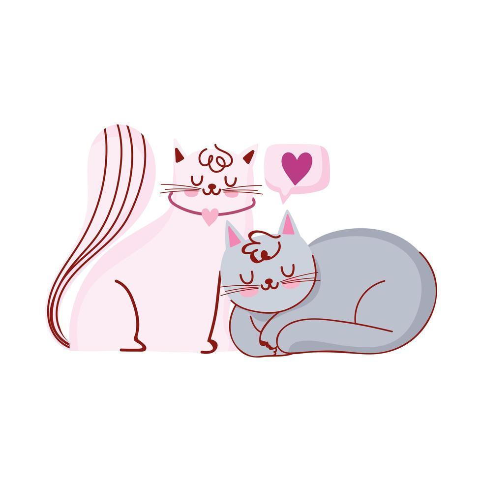 adorables chats blancs et gris animaux domestiques vecteur