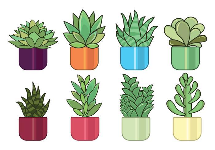 Jeu de plantes succulentes vecteur