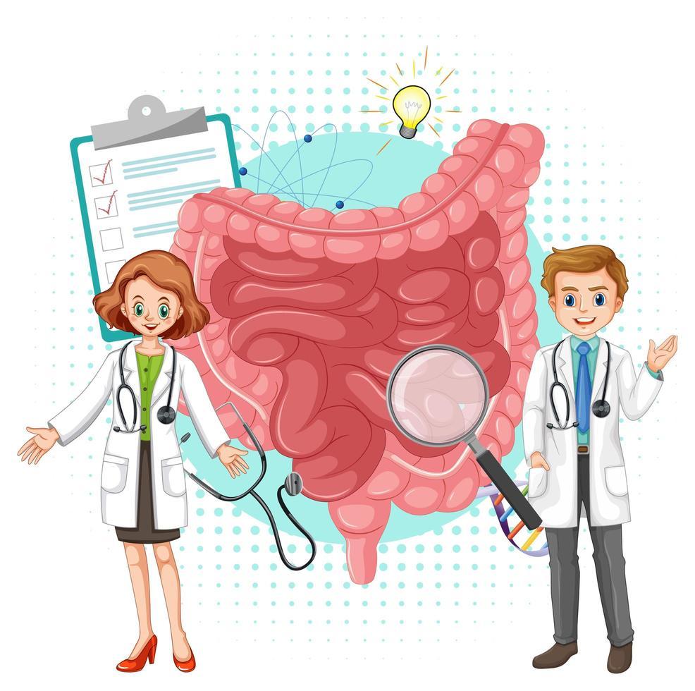 médecin et intestin humain sur fond blanc vecteur