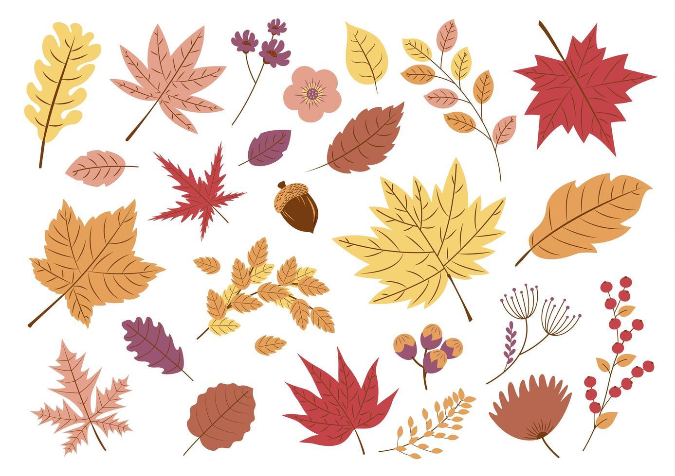 ensemble de feuilles d'automne vecteur