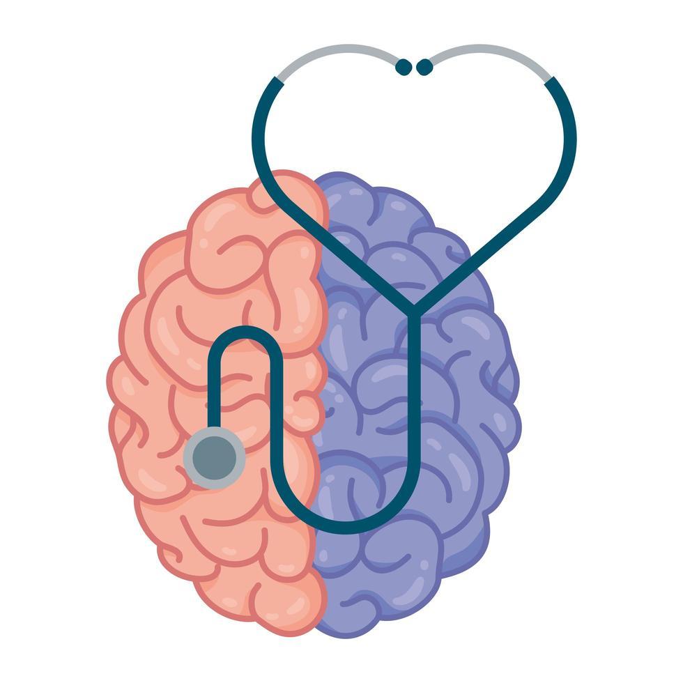 cerveau humain avec des couleurs divisées et un stéthoscope vecteur