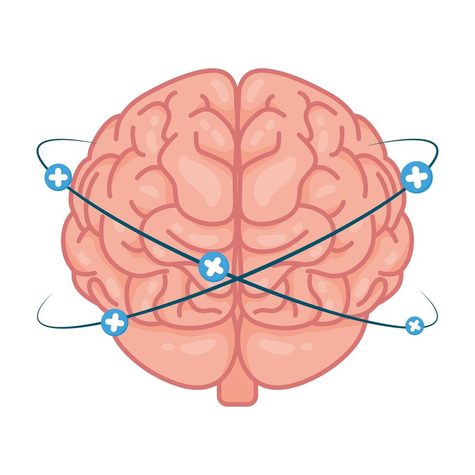 cerveau humain avec symboles plus vecteur